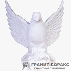 Фото №2. Голубь для памятников - голуби.